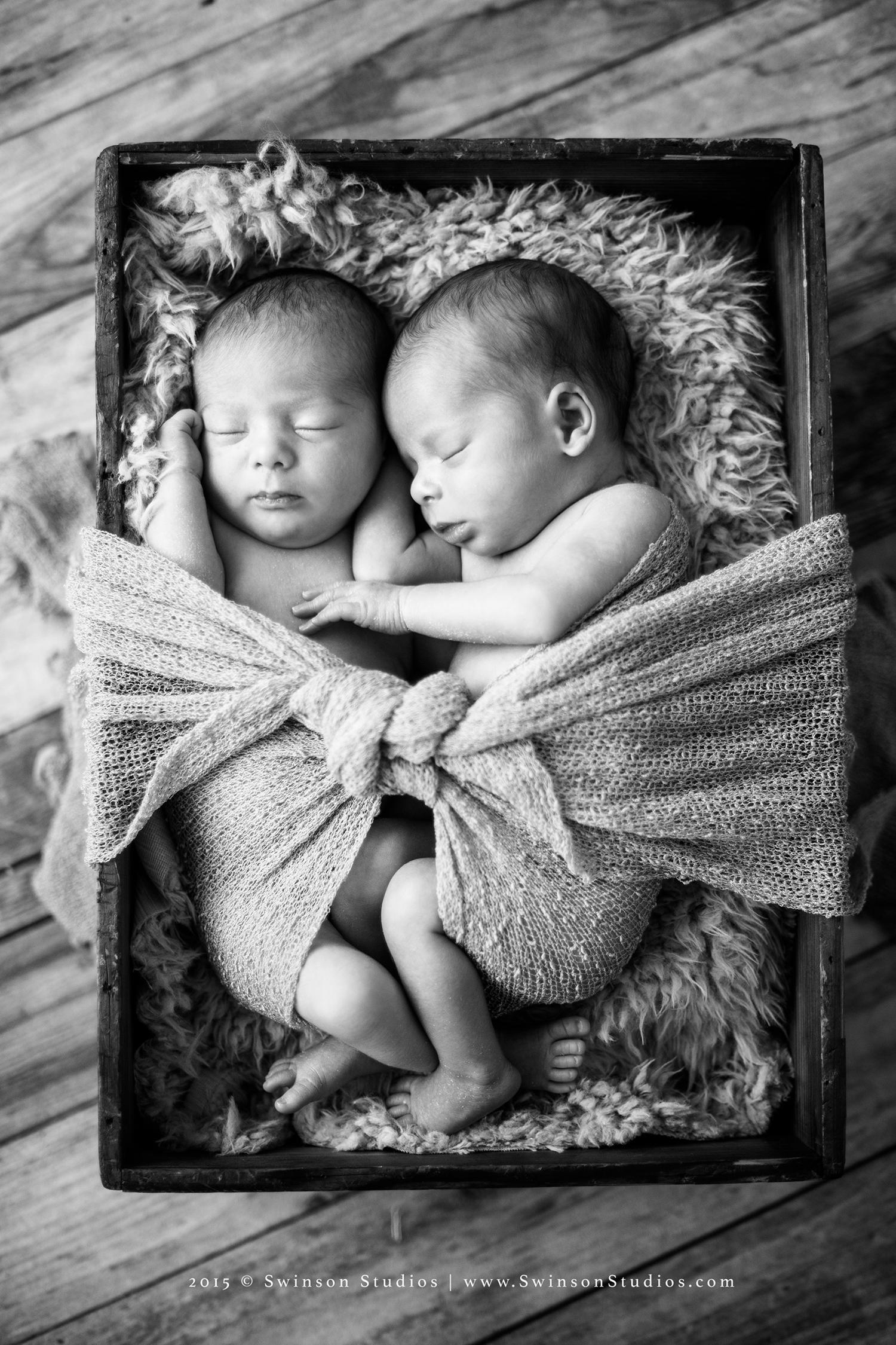 Denver-CO-Newborn-Photographer-14